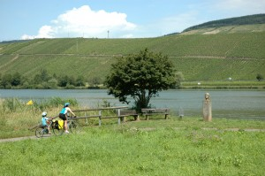 Family friendly cycle rides - out for a ride with the tagalong bike