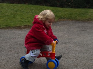 Review to find out how fast can a kid go on a toddler bike