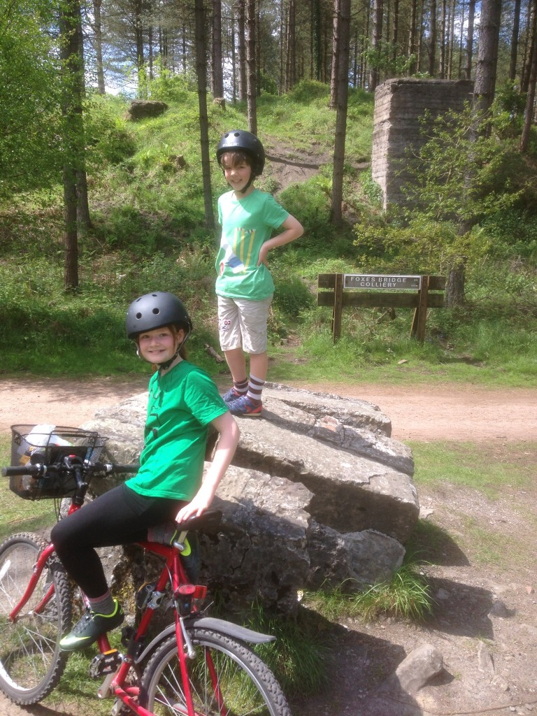 Forest of Dean Family Cycling Route