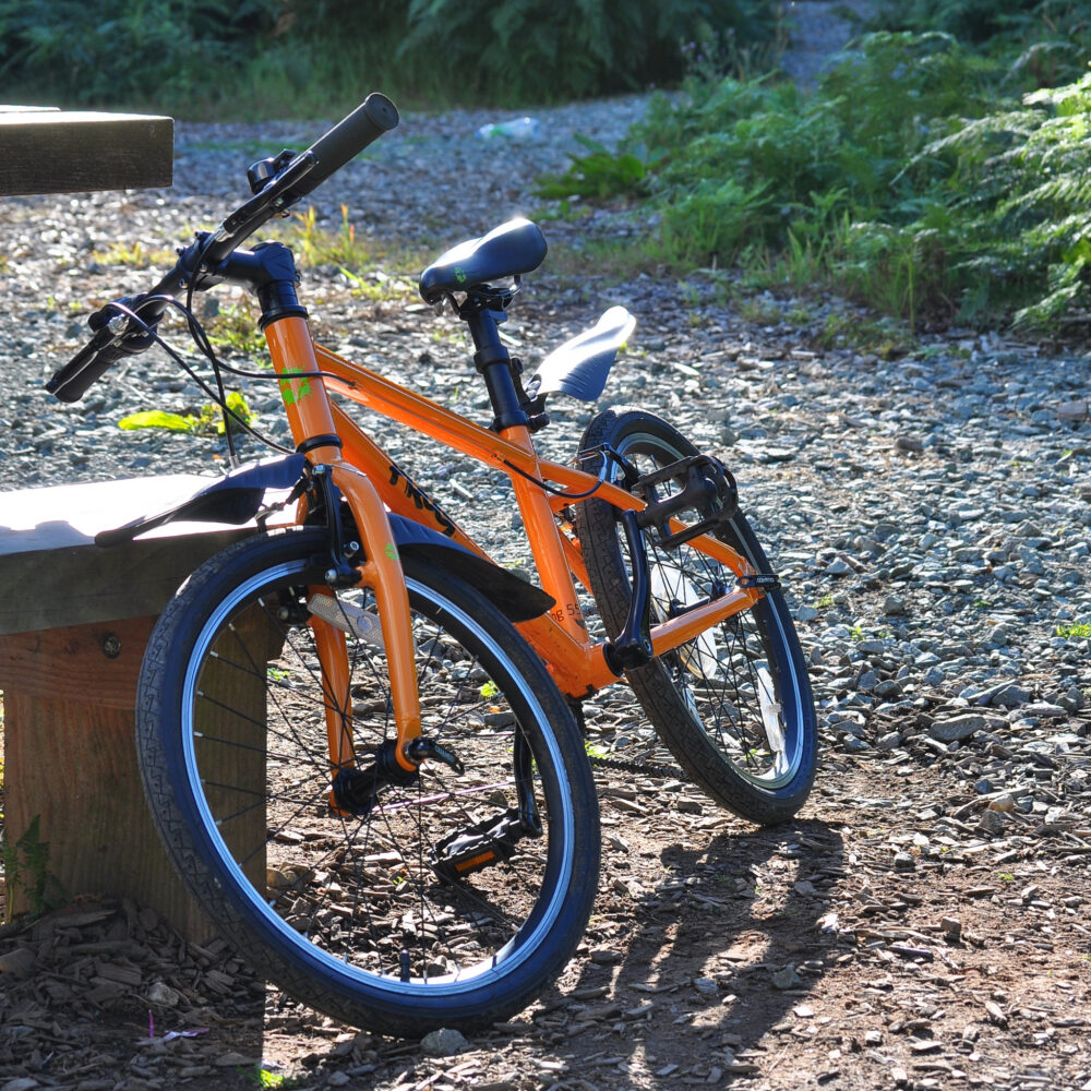 69462c67c13 Sprog on a Frog! - Frog 55 kids bike review by Cycle Sprog