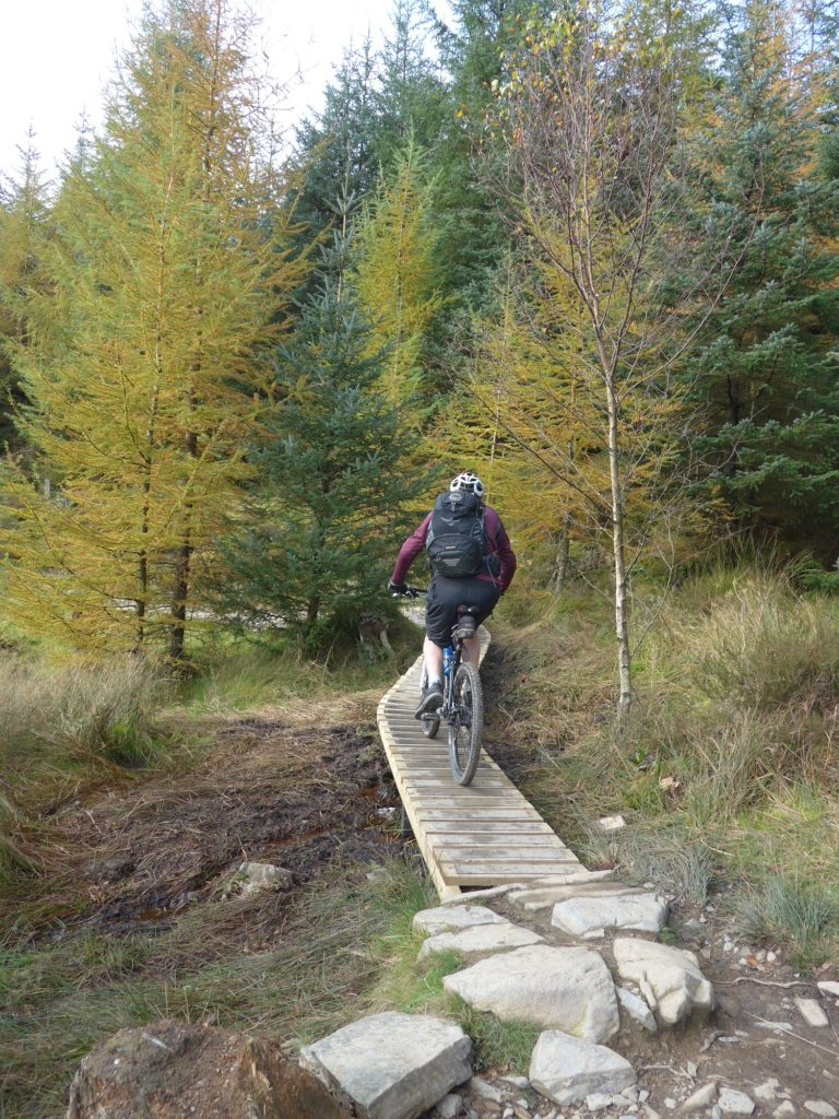 Riding the North Face Mountain Bike Trail at Grizedale Forest