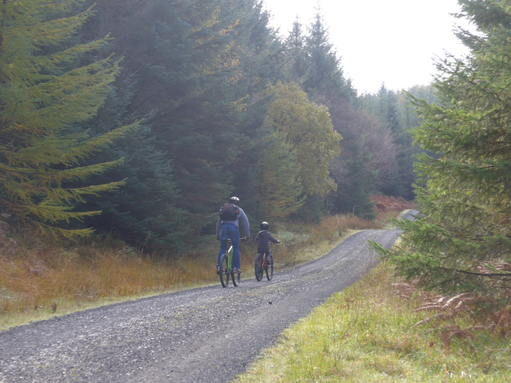 Family cycling at Grizedale Forest