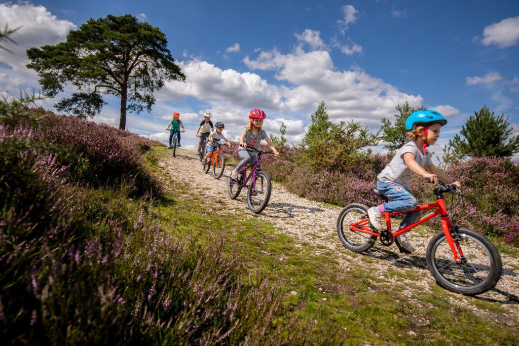 Vitus Kids bikes