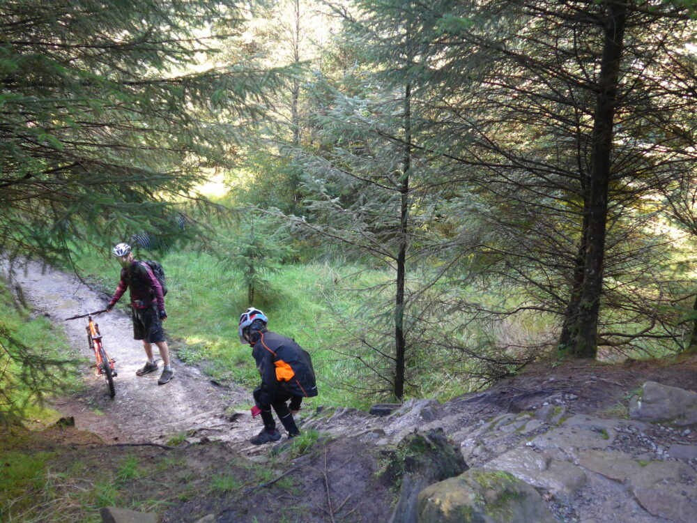 Riding the red MTB route at Gisburn Forest, Lancashire