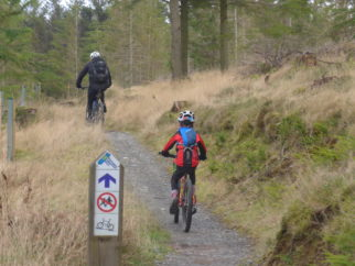 The blue route at Whinlatter is great for all the family to give mountain biking a go