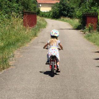 Vitus 14 kids bike in action