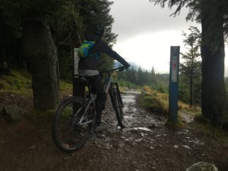 Spooky Wood Descent at Glentress on the Cube Stereo 140 Youth Mountain Bike