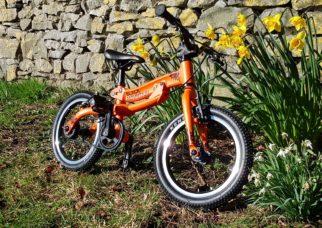 Pinto balance bike that grows into a pedal bike