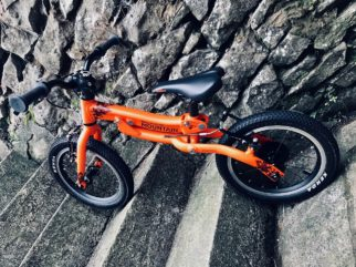 Black Mountain Review - Pinto growing bike
