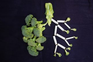 Broccoli Lungs - Photo by Sara Bakhshi on Unsplash