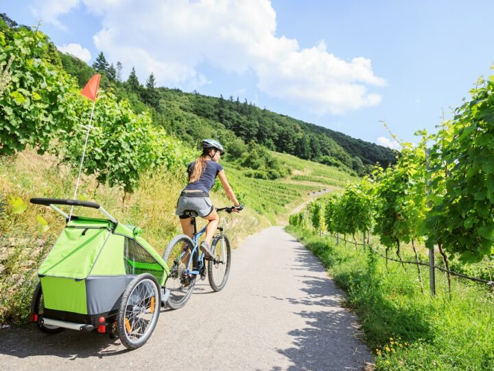 Learn how to start using a kids bike trailer - Cycle Sprog
