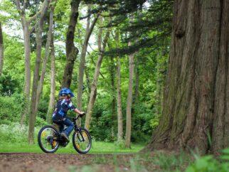 Specialized Jett 20 kids bike review