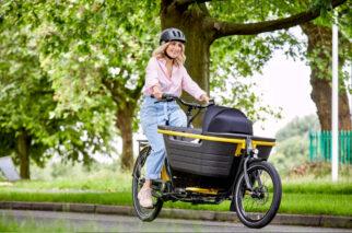 Raleigh Stride E-Cargo Bike